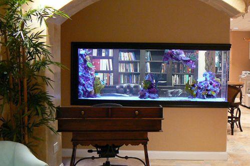 Custom homes and fishtanks custom acrylic aquarium for Custom made fish tanks