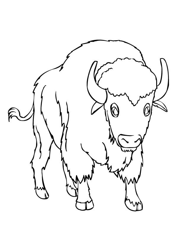 Print Coloring Image Momjunction Coloring Pages Animal