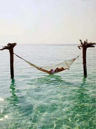 In a Hammock on the Sea, Amazing Photo