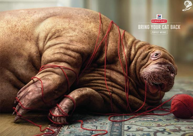 Pin By Michał Rudek On AD Print Pinterest Cannes Lion - Fascinating 3d renderings of people and animals by maxim shkret