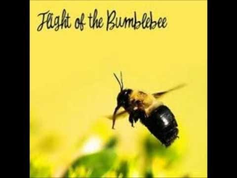 Nikolai Rimsky Korsakov - Flight of the Bumblebee