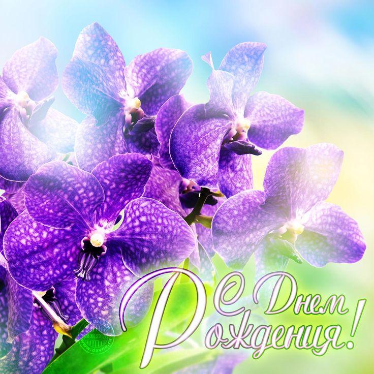 Для, открытки с орхидеями на день рождения