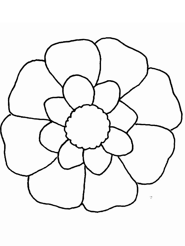13 best Katie\'s flowers images on Pinterest | Coloring books ...