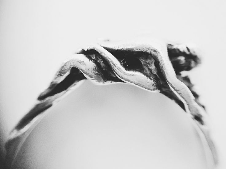 Серебряное кольцо в дар (Москва). Дару~дар