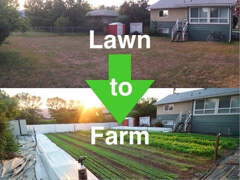 A segment of the Profitable Urban Farming 1 day workshop. Filmed in Christchurch, NZ as part of the 6 Figure Farming NZ Tour For more detailed information li...