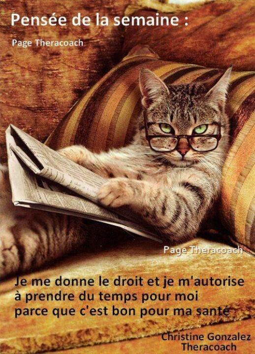 Je me donne le DROIT #Citation #Humour #HistoireDrole #rire #ImageDrole #myfashionlove www.myfashionlove.com