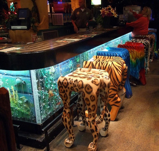25 best images about fish tanks on pinterest aquarium decorations aquarium stand and drunk people. Black Bedroom Furniture Sets. Home Design Ideas