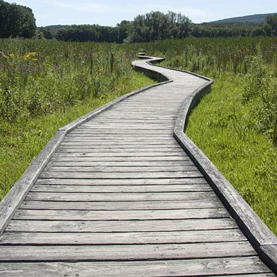 Trail maps, photos, videos, and info for some trails in New Jersey that are easy or short. These trails are either under 4 miles and/or easy – suitable for beginning hikers or anyone looking for an easy day hike.