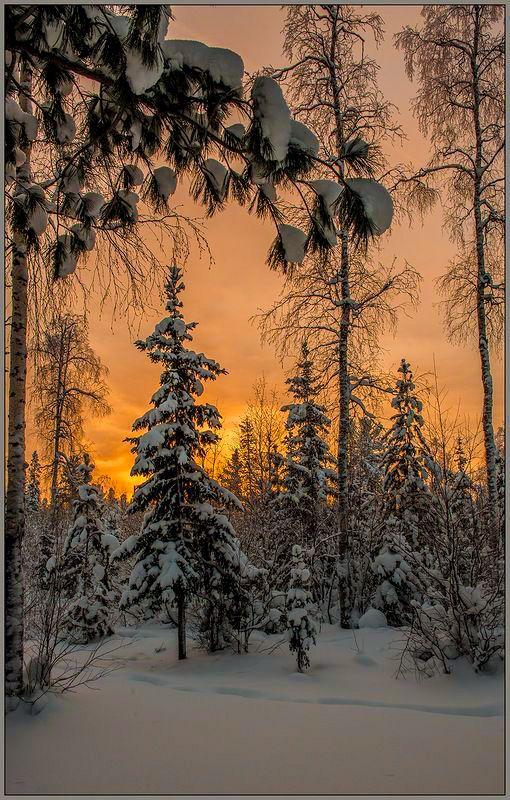 ***Тихим, зимним вечером. Фото, автор Aleksej Tushin на Яндекс.Фотках // Quiet winter evening (Russia) by Aleksej Tushin on fotki.yandex
