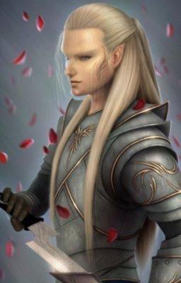 elf male paladin he looks familiar
