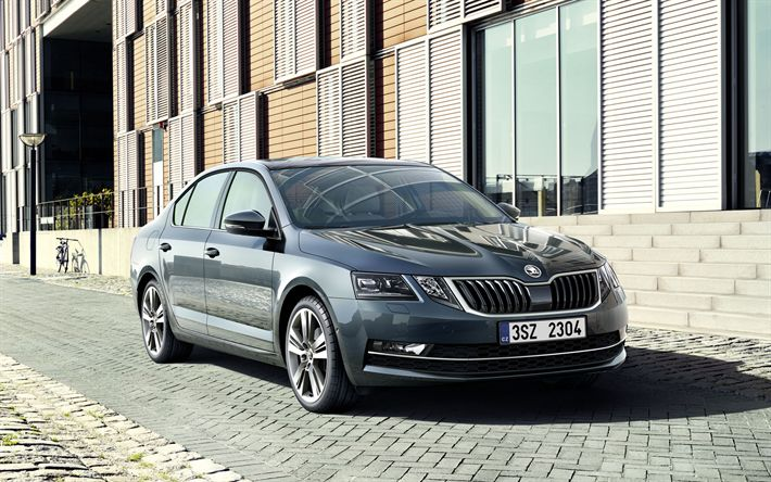 Descargar fondos de pantalla Skoda Octavia, 2018 coches, Octavia gris, de la calle, Skoda