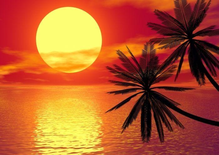 XXL Hochglanz-Poster 100 x 70cm romantischer Sonnenuntergang am Meer mit Palmen