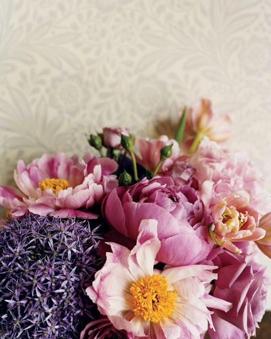 purple, pink, orange and beige...: The Flower, Beautiful Flower, Color Palettes, Spring Flower, Color Inspiration, Arrangements Flower, Flower Arrangements, Flower Sets, Bouquets Flower