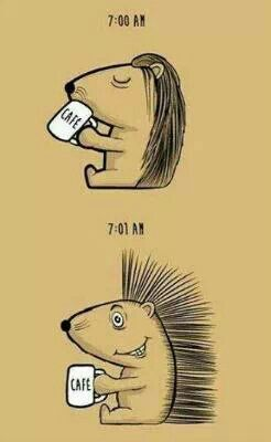Even porcupines need their coffee.  #CoffeeMillionaires #CoffeeLovers #workfromhome