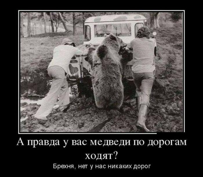 Демотиваторы - приколы / Приколы