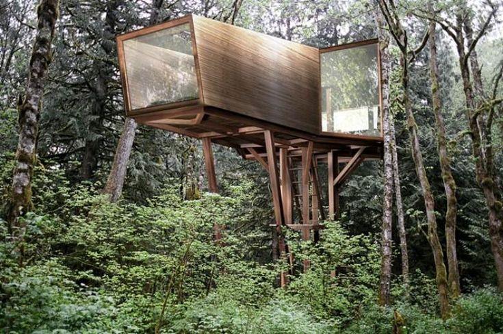 современный дом на дереве