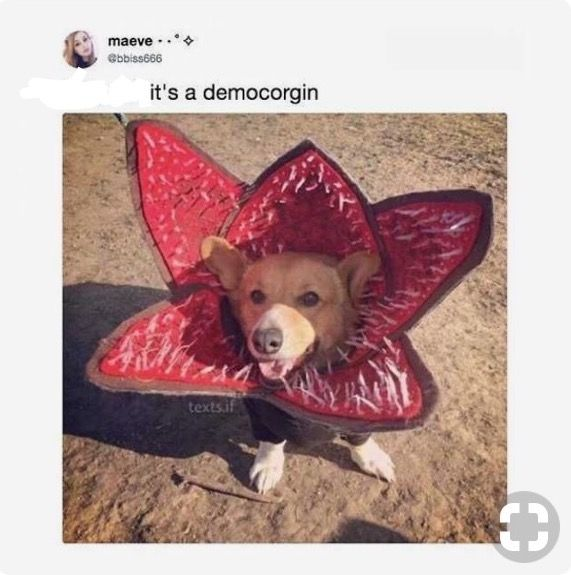 Could've just said it's a demodog.. but okie