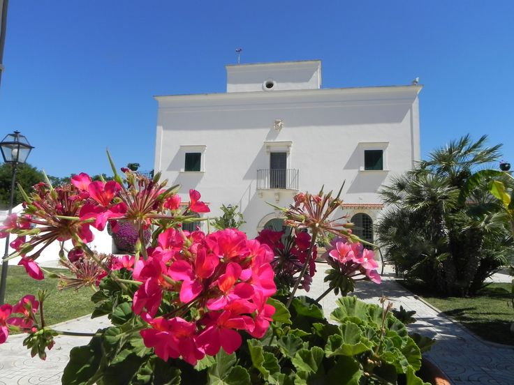 Flowers; Taranto Casal Duca