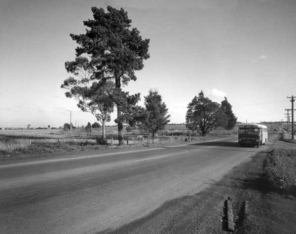 Site for LaTrobe University. [picture] by Wolfgang Sievers, 1965. State Library of Victoria. Personal note: It is very tempting to believe that this is Plenty Road, and the bus is Dyson's route 46A which ran from Regent Station, Preston, to the Janefield Colony, Bundoora. But what little information I've been able to find about the early history of Dyson's (see: http://dysongroup.com.au/history) doesn't mention a bus model that matches this image. :(
