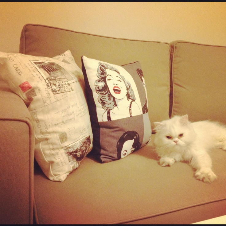 Pillows and luna