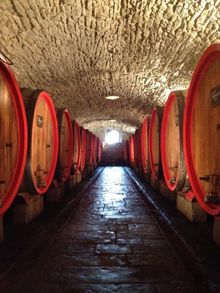 Castello Albola Chianti (Foto by Marcel Bastiaans)