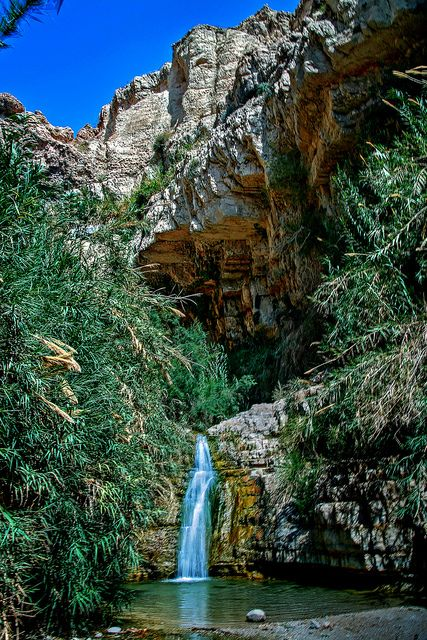 King David Falls, Israel. Ein gedi - place of hiding when David fled from King Saul http://exploretraveler.com