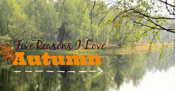 Five Reasons Why I Love Autumn
