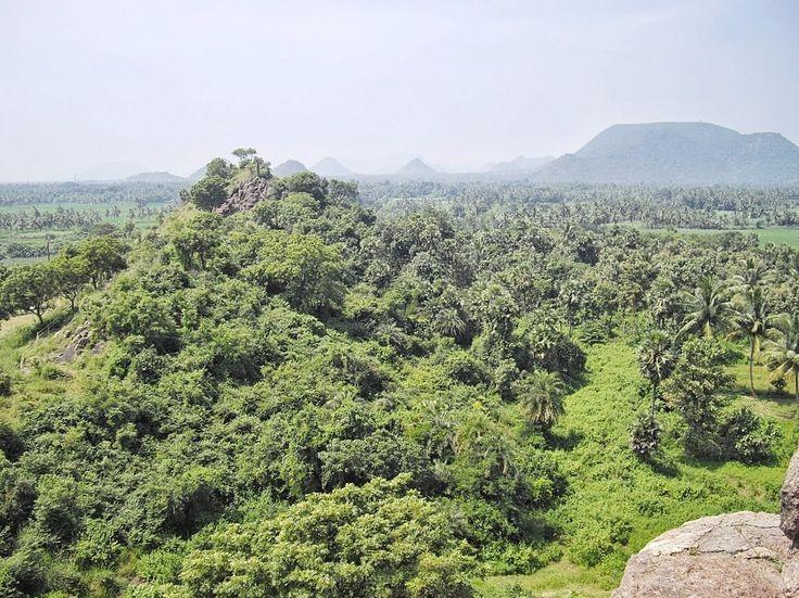 Paysage Inde Voyage Visakhapatnam