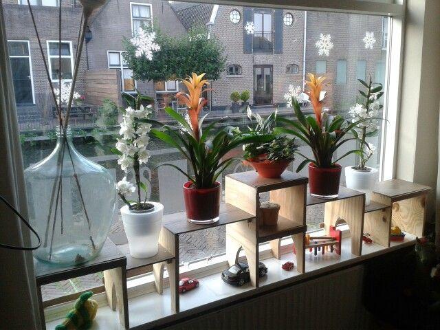 Extra etage op de vensterbank combi spelen en planten for Hangdecoratie raam