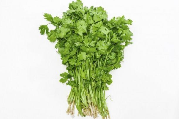Svazek čerstvého koriandru.......... http://www.epochtimes.cz/2015100122987/Koriandr-bylina-do-kuchyne-i-lekarny.html