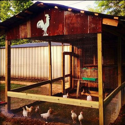 """Owner: Penny Mathis Vaughn Location: Booneville, Mississippi She says: """"My chicken coop has hardware cloth around the bottom."""" RELATED: Country Living Readers' Enviable Porches"""