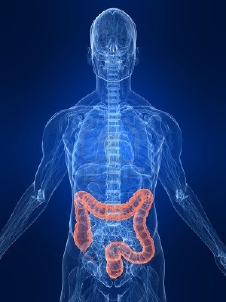 People particularly at risk for colon cancer are African Americans, individuals with a family history of colon cancer, and those with certain disorders such as inflammatory bowel disease. | Colonoscopy Los Angeles
