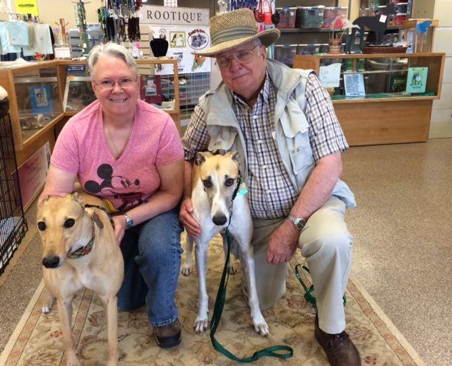 Sky with his new family G.G., Gail and David. Congratulations to this new #fureverfamily! #adoptaretiredracer #gpi #greyhound #greyhoundpetsinc #greyhoundsmakegreatpets