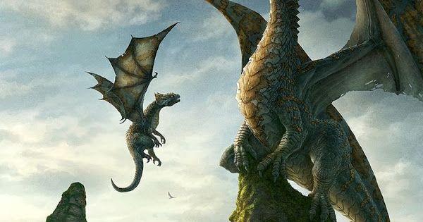 Dragons Google Photos Dragon Photo Animals
