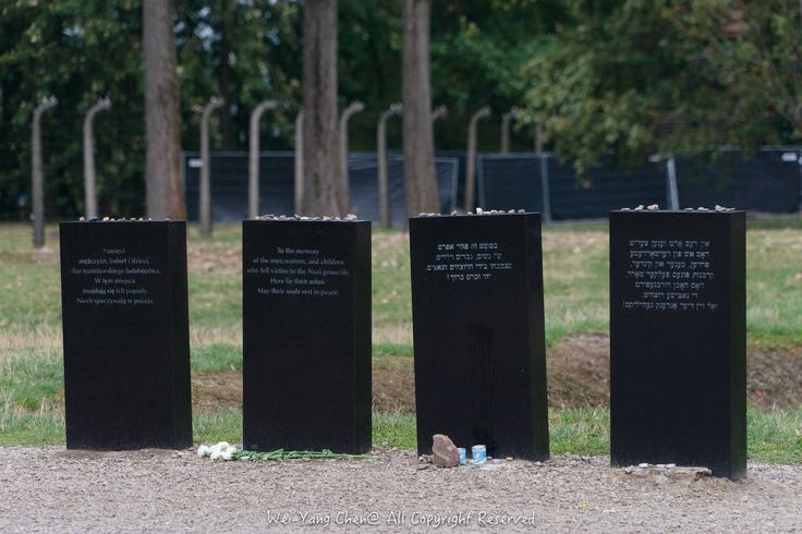 Commemorative plaques near the ruins of gas chamber and crematorium V where corpses were burnt in open-air pits | Photo by wces2600