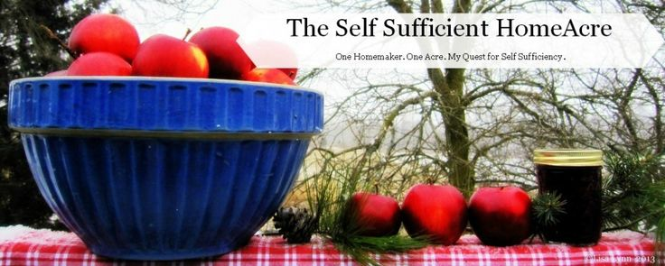 The Self Sufficient HomeAcre | One homemaker. One Acre. My quest for Self Sufficiency. Great blog