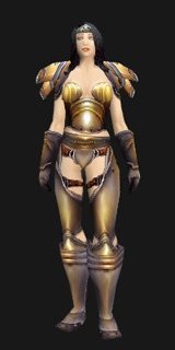 Lord's Mail - Transmog Set - World of Warcraft