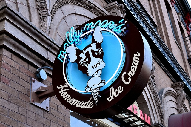 MOLLY MOON'S ICE CREAM, SeattleEmeralds City'S Seattle, Cream Seattle, Balsamic Strawberries, Salts Caramel, Homemade Ice Cream, Moon Homemade, Pacific Northwest, Salted Caramels, Molly Moon Ice Cream