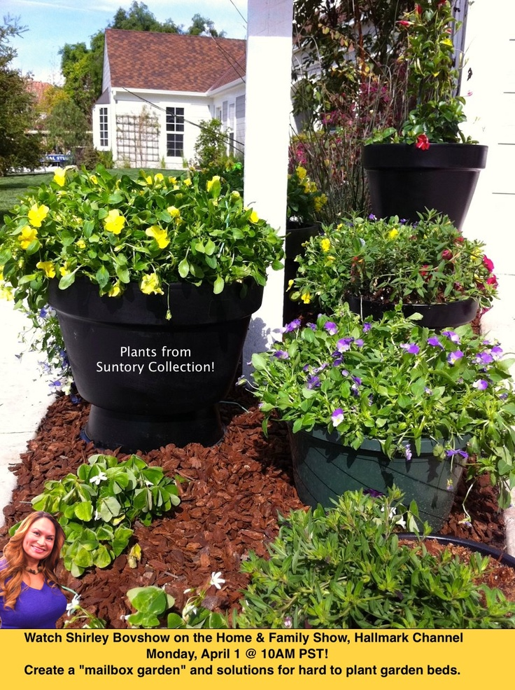 32 best garden center tv web series products i love Home and garden tv channel