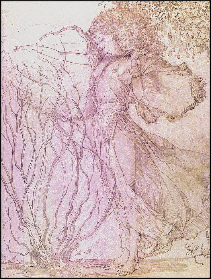 Barry Windsor-Smith NF
