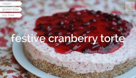 Festive Cranberry Torte « fried dandelions