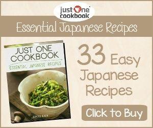 Just One Cookbook E-Book from justonecookbook.com.