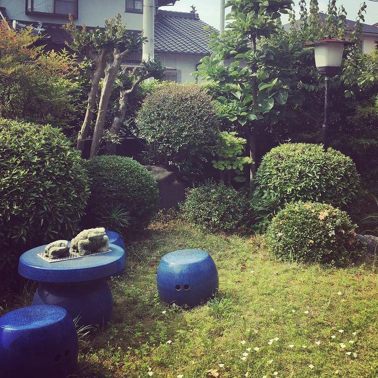 お庭92歳にもなる祖母がよくこれだけの庭を維持するものだと心底感心する#sgraphoto #trip
