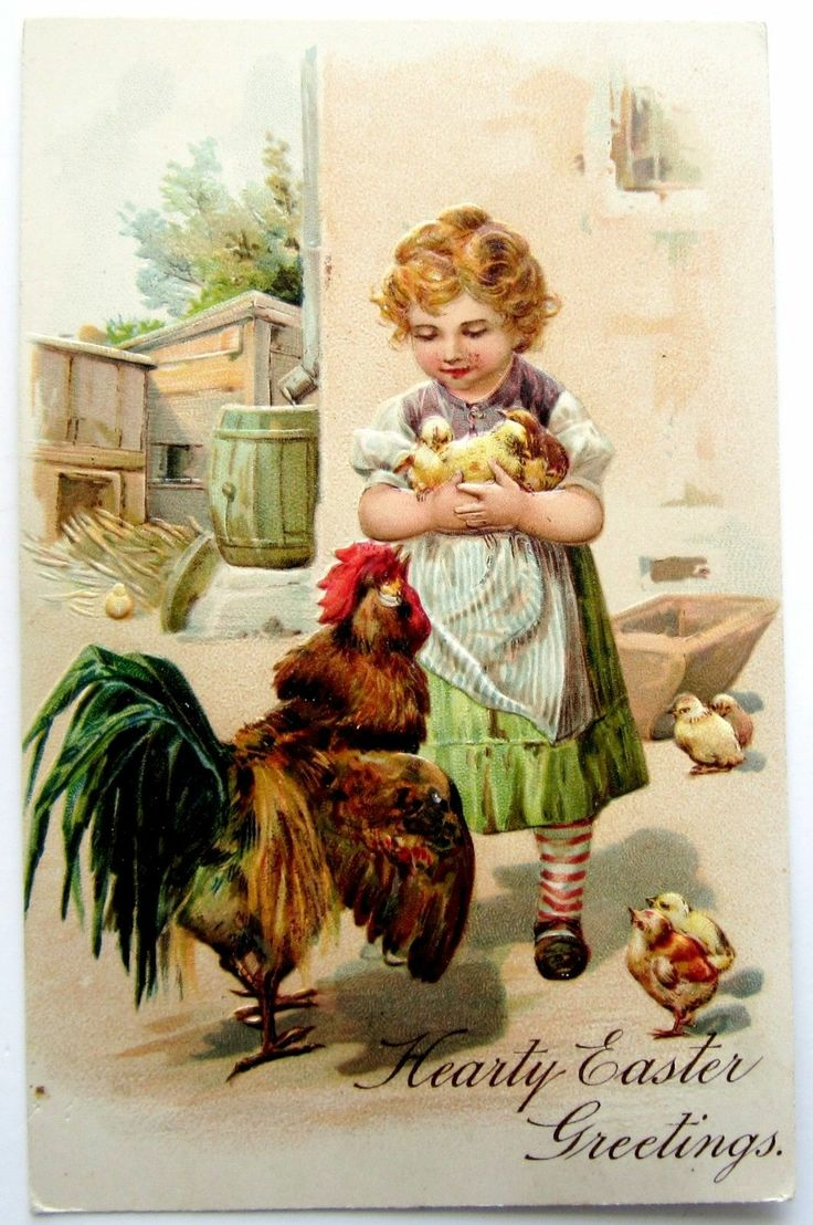 PFB Easter Girl Holds Chicks Rooster Objects Postcard Emb   eBay
