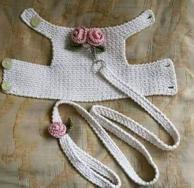 Crochet harness and leash for small dog, (no pattern just photo, but not hard to figure out)