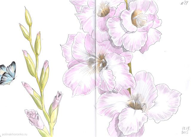 #sketchbook by Polina Khoronko: Скетчбук 2015 #watercolor #flowers