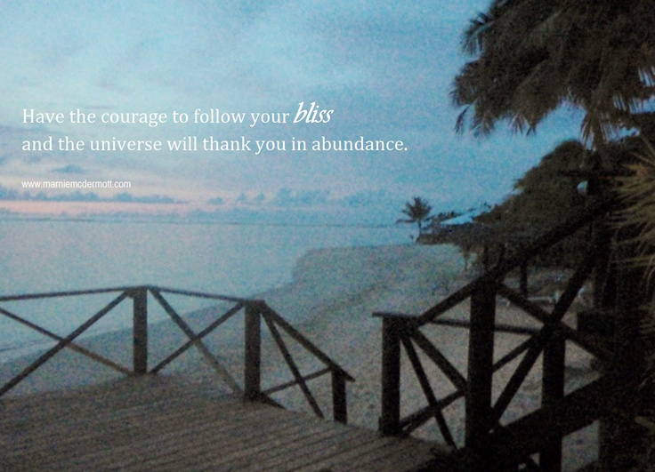 Have the courage to follow your bliss and the universe will thank you in abundance. <3   Marnie McDermott
