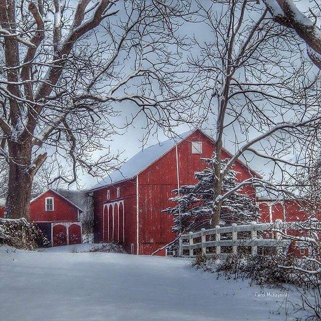 Love this snowy rural scene near Mount Gilead, Ohio, by ...
