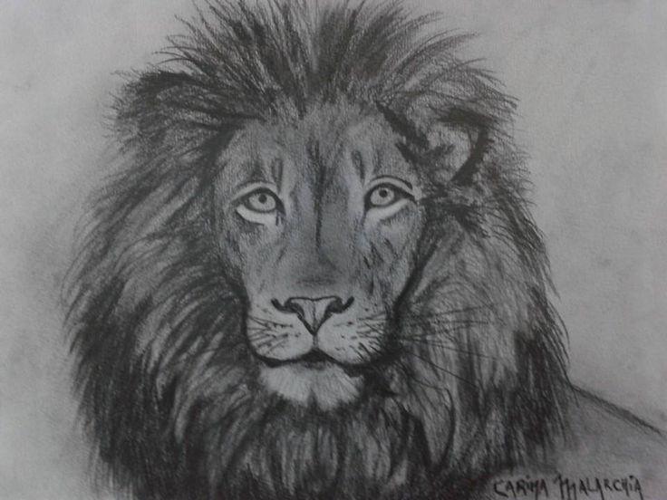 Dibujos de un leon a lapiz  Imagui
