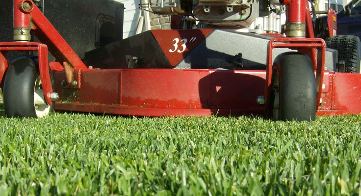 Lederlandscape Inc. provides professional Lawn Mowing Services and all Landscaping Services at most affordable prices in Buffalo Grove and other NW Chicago Suburb areas. For more assistance please give us a call on 847-870-0287.